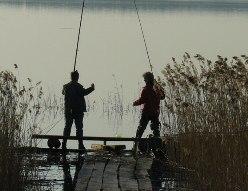 Дом отдыха, рыбалка Подмосковье - отличное решение для проведения отпуска